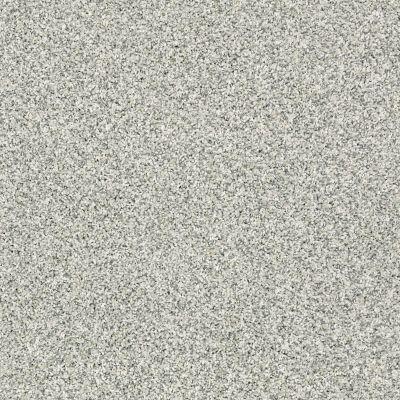 Shaw Floors Foundations Sense Of Reflection Sea Glass 00320_EA698