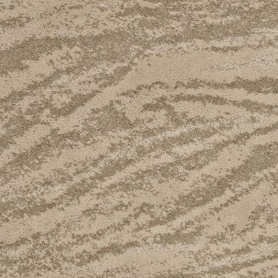 Shaw Floors Foundations Velour Raffia 00104_EA699