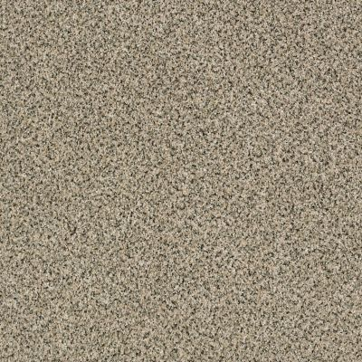 Shaw Floors Foundations Iconic Element Sesame Seed 00102_EA708