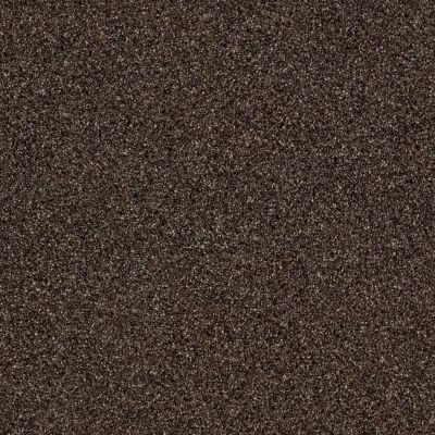 Shaw Floors Foundations Iconic Element Buckeye 00703_EA708