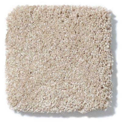 Shaw Floors Anso Colorwall Titanium Texture Natural Wood 00701_EA709