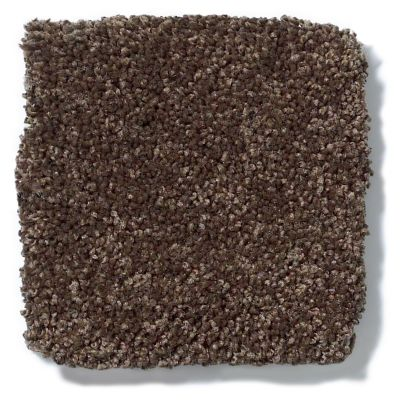 Shaw Floors Anso Colorwall Titanium Texture African Safari 00733_EA709