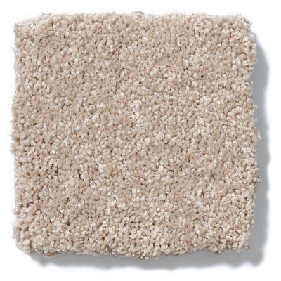 Shaw Floors Anso Colorwall Titanium Texture Pueblo 00740_EA709