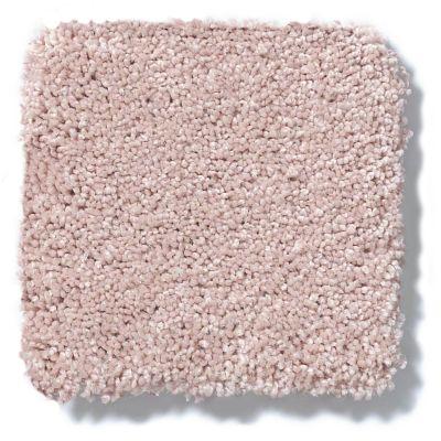 Shaw Floors Anso Colorwall Titanium Texture Daydream 00830_EA709