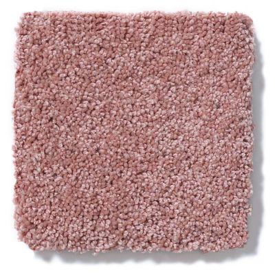 Shaw Floors Anso Colorwall Titanium Texture Azalea Bloom 00831_EA709