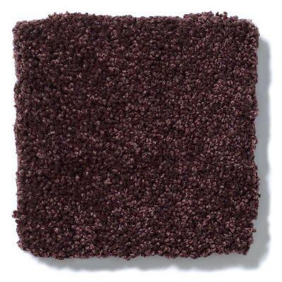 Shaw Floors Anso Colorwall Titanium Texture Japanese Maple 00834_EA709