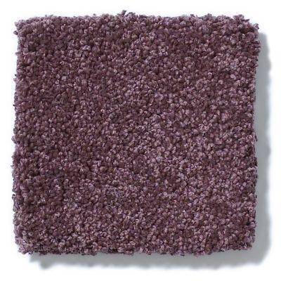 Shaw Floors Anso Colorwall Titanium Texture Kudu Berries 00933_EA709