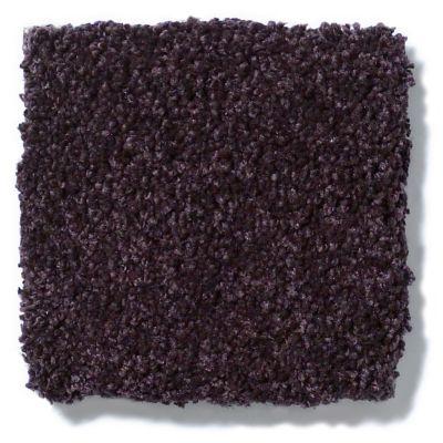 Shaw Floors Anso Colorwall Titanium Texture Tyrian Purple 00934_EA709