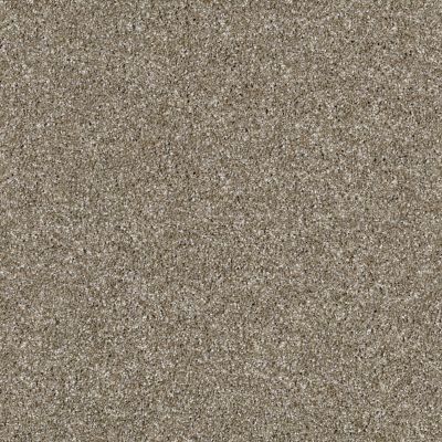 Shaw Floors Simply The Best Virtual Gloss Granola 00113_EA718