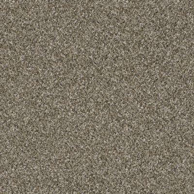 Shaw Floors SFA Virtual Gloss Tortoise Shell 00114_EA718