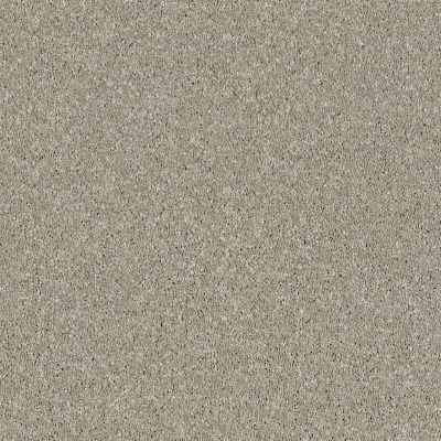 Shaw Floors Simply The Best Virtual Gloss Morning Dew 00116_EA718