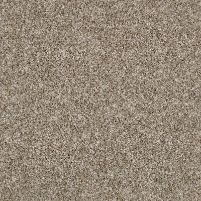 Shaw Floors Value Collections Breathe & Reflect Net Sugar Cookie 00101_EA720
