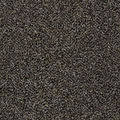 Shaw Floors Value Collections Breathe & Reflect Net Black Granite 00503_EA720