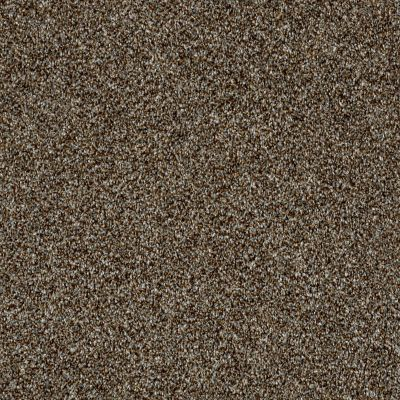 Shaw Floors Value Collections Breathe & Reflect Net Chateau 00701_EA720