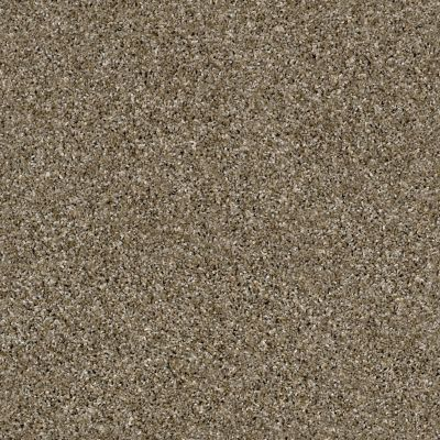 Shaw Floors Value Collections Nature Essence Net Dirt Road 00700_EA723