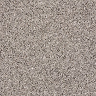 Shaw Floors Anso Colorwall Gold Texture Accents Quartz 00580_EA759