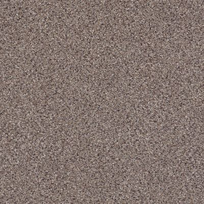 Shaw Floors Anso Colorwall Gold Texture Accents Granite 00781_EA759