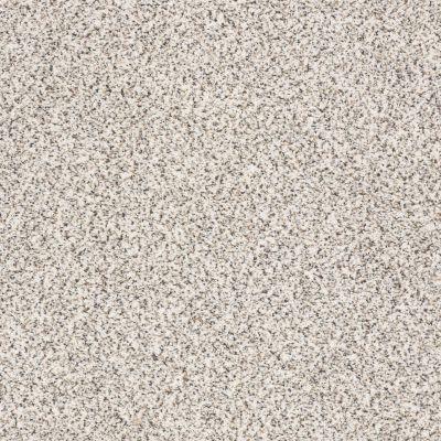 Shaw Floors Accents Artifact GF00183_EA760
