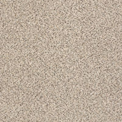 Shaw Floors Accents Bistro GF00184_EA760