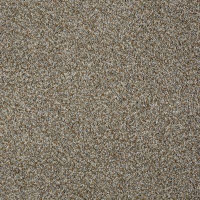 Shaw Floors 300sl 12′ Fog 00122_EA763