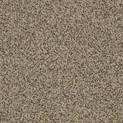 Shaw Floors 300sl 12′ Lioness 00220_EA763