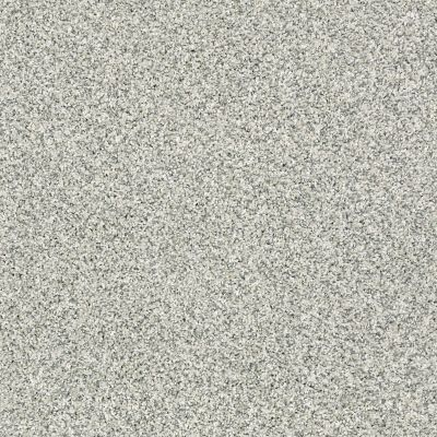 Shaw Floors 300sl 12′ Sea Glass 00320_EA763