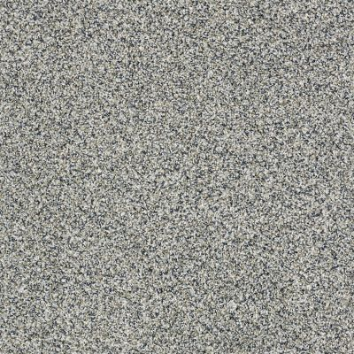 Shaw Floors 300sl 12′ Peaceful Mood 00420_EA763