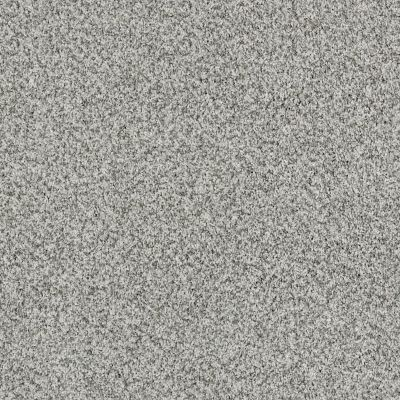 Shaw Floors 300sl 12′ Smoked Pearl 00520_EA763