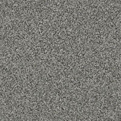 Shaw Floors 300sl 12′ Anchor 00521_EA763