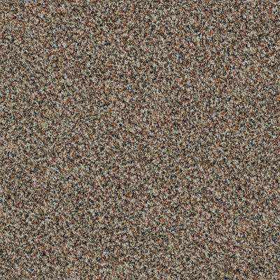 Shaw Floors 300sl 12′ Quarry 00722_EA763