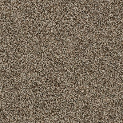 Shaw Floors 300sl 15′ Quarry 00722_EA764