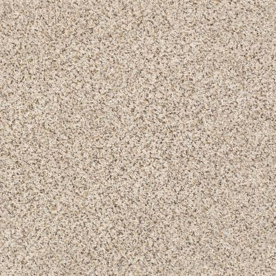 Shaw Floors SFA Strands Of Nature I Horizon 00172_EA768