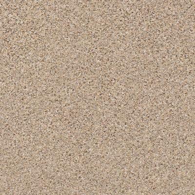 Shaw Floors SFA Strands Of Nature II Twine 00175_EA769