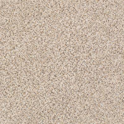 Shaw Floors SFA Strands Of Nature III Horizon 00172_EA770