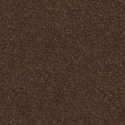 Shaw Floors SFA Find Your Comfort Ns II Chocolate Treat (s) 707S_EA815