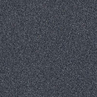 Shaw Floors SFA Find Your Comfort Tt I Washed Indigo (t) 440T_EA817