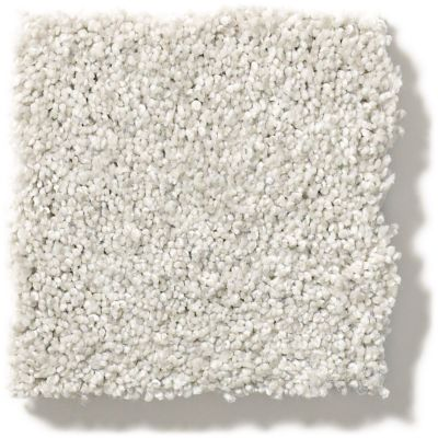 Shaw Floors SFA Find Your Comfort Tt II Whitewashed Frame (t) 154T_EA818