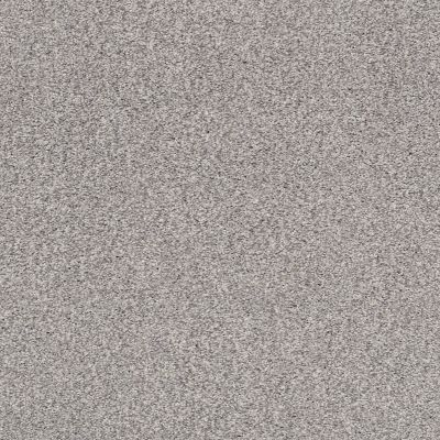 Shaw Floors SFA Find Your Comfort Tt II Whisper (t) 536T_EA818