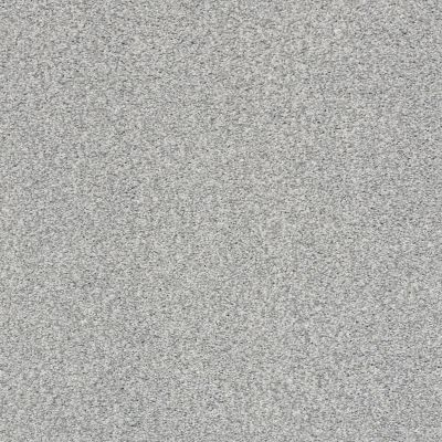 Shaw Floors SFA Find Your Comfort Tt II Polished Silver (t) 538T_EA818