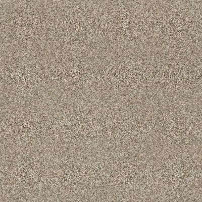 Shaw Floors SFA Find Your Comfort Tt II Dockside View (t) 722T_EA818