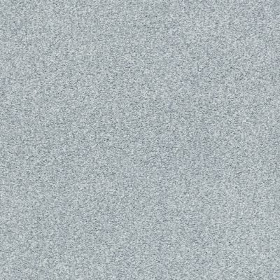 Shaw Floors SFA Find Your Comfort Tt Blue Polished Silver (t) 538T_EA819