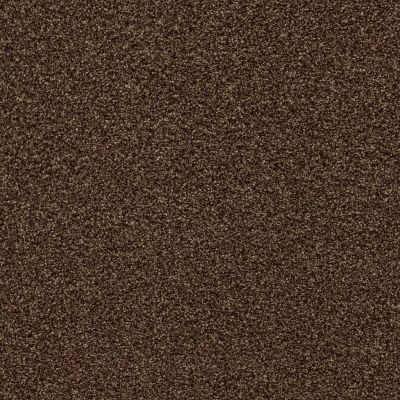 Shaw Floors SFA Find Your Comfort Tt Blue Chocolate Treat (t) 707T_EA819