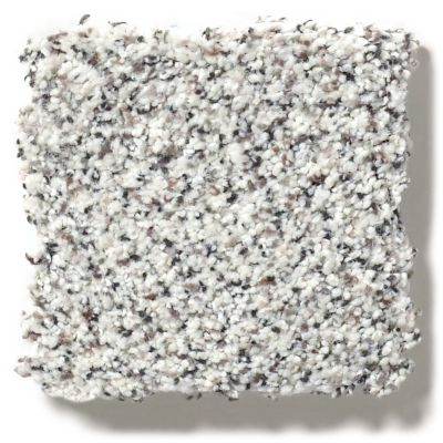 Shaw Floors SFA Find Your Comfort Ta II Glam Up (a) 163A_EA821