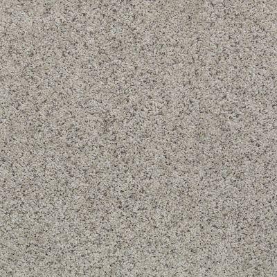 Shaw Floors SFA Victory Hill Cool Slate 00703_EA976