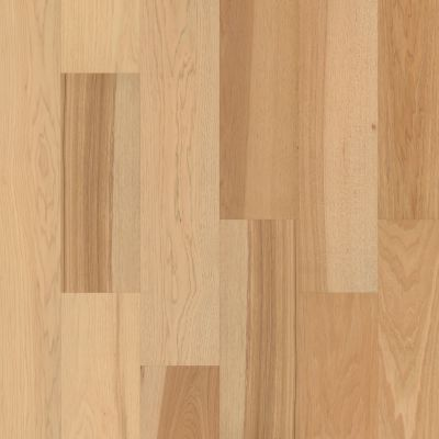 Shaw Floors Floorte Exquisite Fresh Hickory 01104_FH813