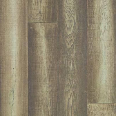 Shaw Floors Floorte Exquisite Riverbed 05068_FH820