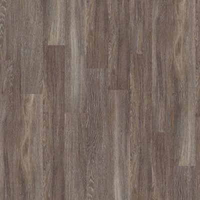 Shaw Floors To Go Hard Surfaces Yorktown Plank 6 Dublin 00763_FR536