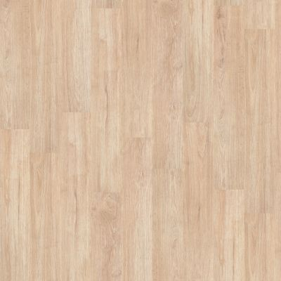 Shaw Floors To Go Hard Surfaces Unita Park Plank 12 Mil Sidewalk 00126_FR538