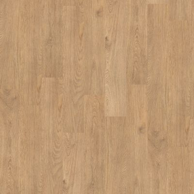 Shaw Floors To Go Hard Surfaces Unita Park Plank 12 Mil City Center 00247_FR538