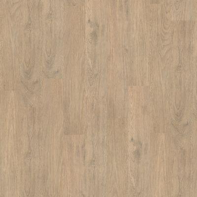 Shaw Floors To Go Hard Surfaces Unita Park Plank 12 Mil Ferry 00529_FR538